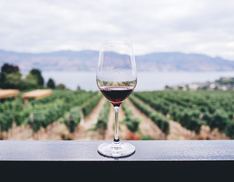 25th May 2018 - as well as GDPR coming into force, it's also National Wine Day